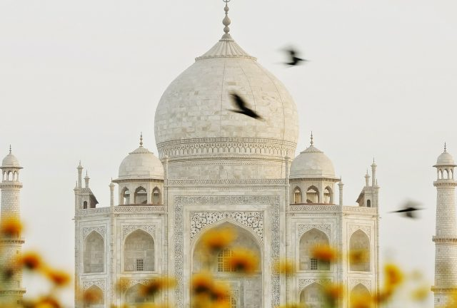 Taj mahal, Taj mahal tour, north india tour, india tour