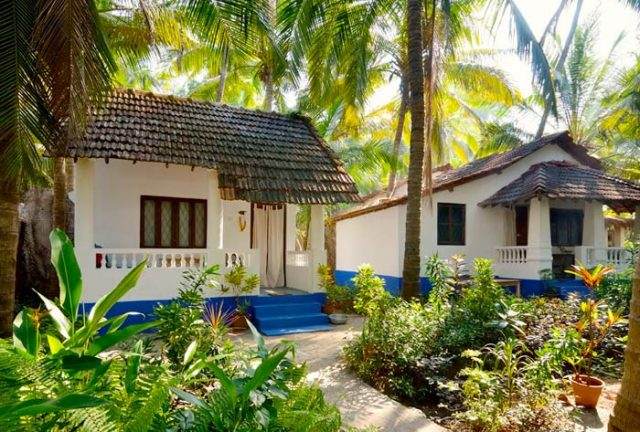 kerala tour package, kerala tour, south india, honeymoon tour, spice tour of kerala